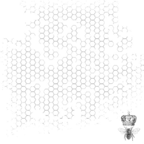Picture of Forget Me Not Specialty Paper Acetate - Bee Hive
