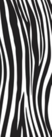 Picture of Into the Wild Textured Clear Stamp Zebra